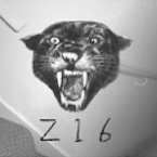 The Zoot 16 : Z16